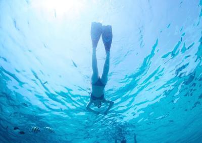 Elaphiti Islands Private Diving Adventure